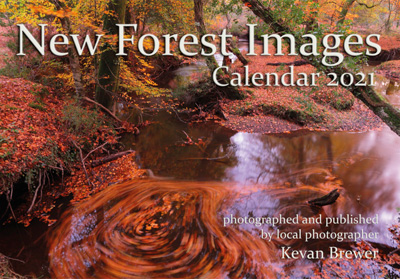 New Forest Images Calendar 2021