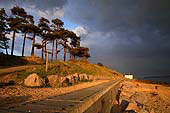 Late Evening Sunshine at Lepe 